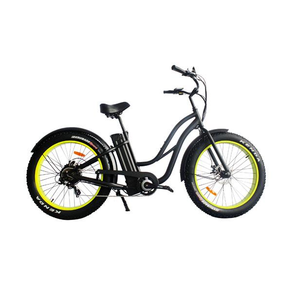 Fat Tire Ebike RSD-506