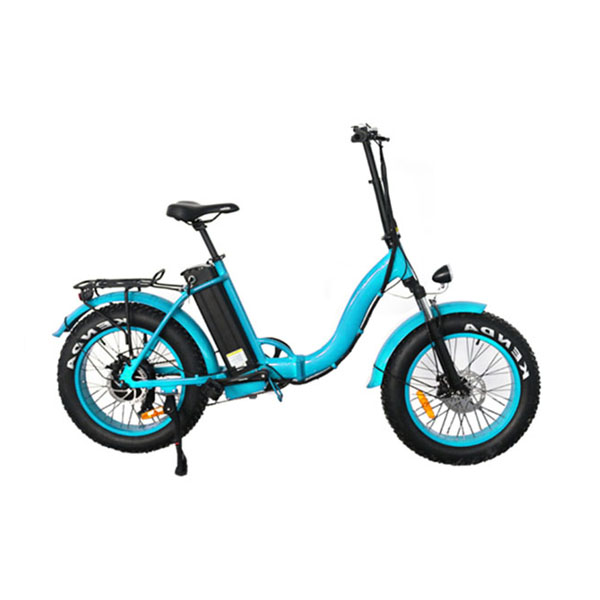 Fat Tire Folding Electric Bike RSD-509