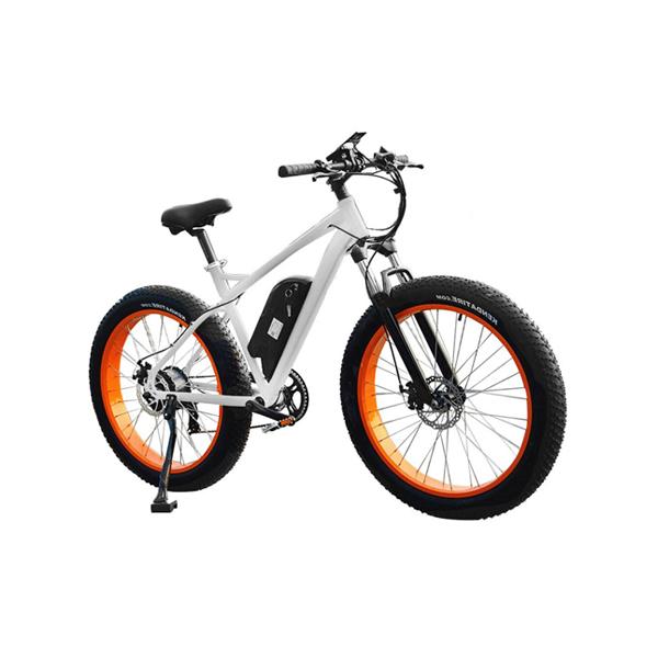 Fat Tire Mountain Electric Bike RSEB-508