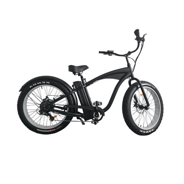 Fat Tire Electric Bike RSD-503
