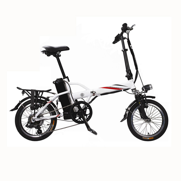 Folding Electric Bike RSEB-101