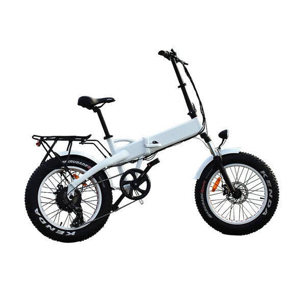 Folding Fat Tire Hidden battery Electric Bike RSEB-511