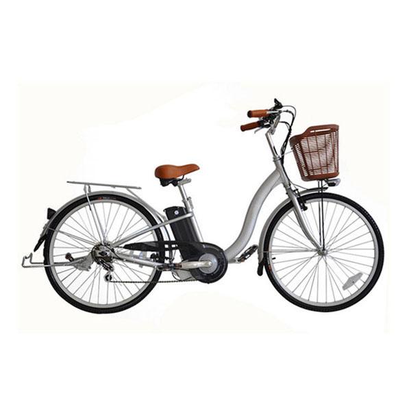 Road Electric Bike RSD-206