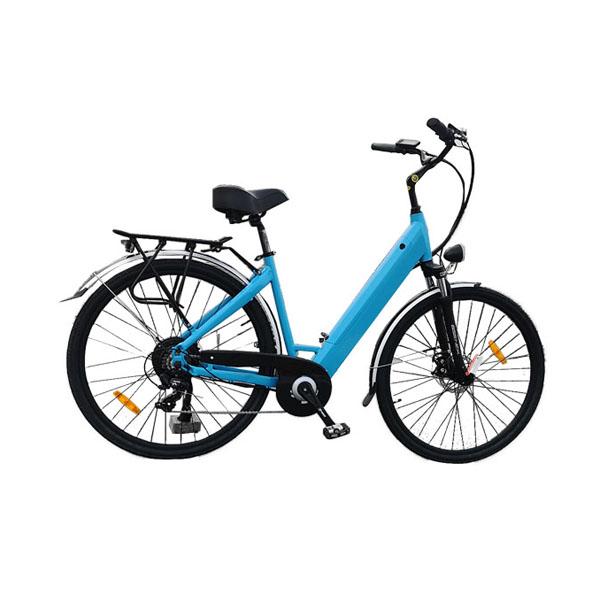 City Electric Bike RSD-206