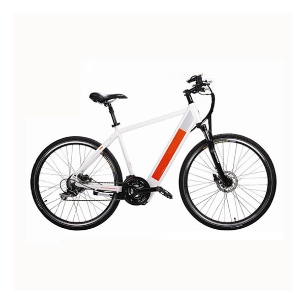 Mountain Electric Bike RSD-304