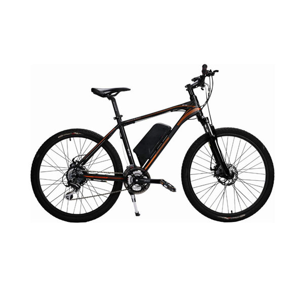 Mountain Electric Bike RSD-401