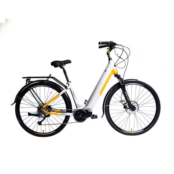 Mid Driving Road Electric Bike RSEB-404