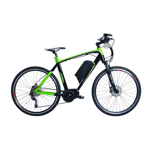 Mid Driving Mountain Ebike RSEB-402