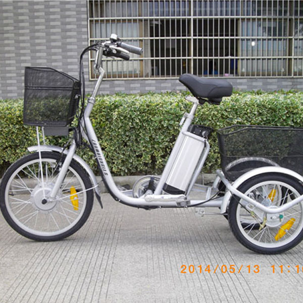 Electric Tricycle RSD-704