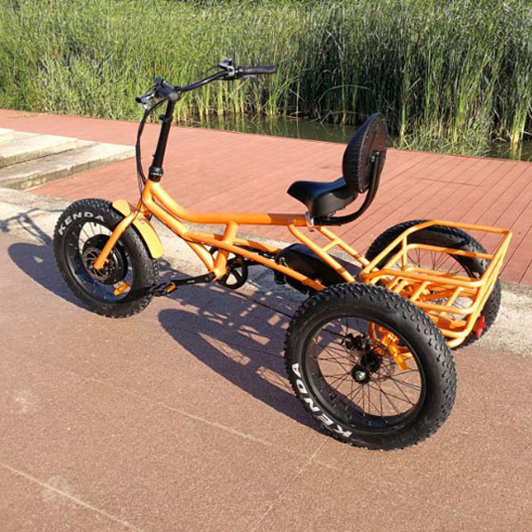 Leisure e tricycle RSD-701