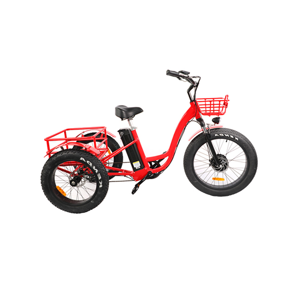 Adult Electric Tricycle RSD-708