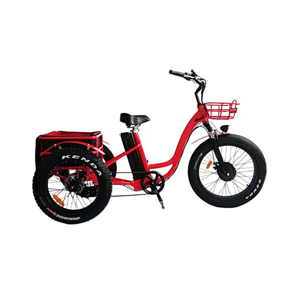 China Adult Electric Tricycle E Trike For Sale RSD-708