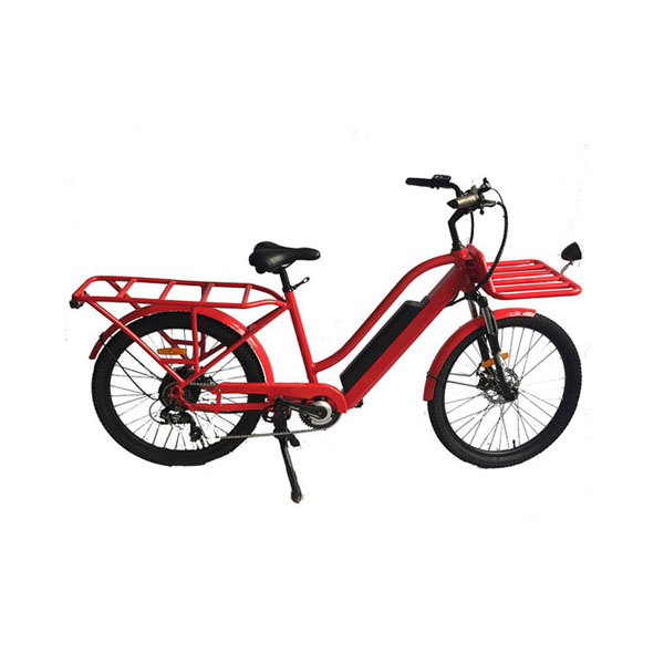 New arrival big capacity electric cargo bike for wholesale